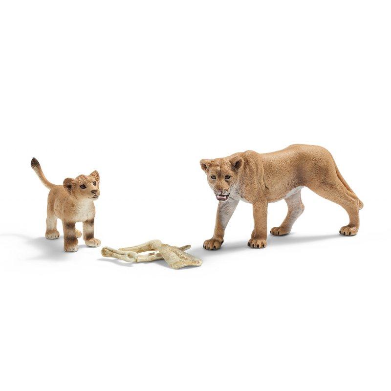 Schleich löwen geschenk set wild life casime